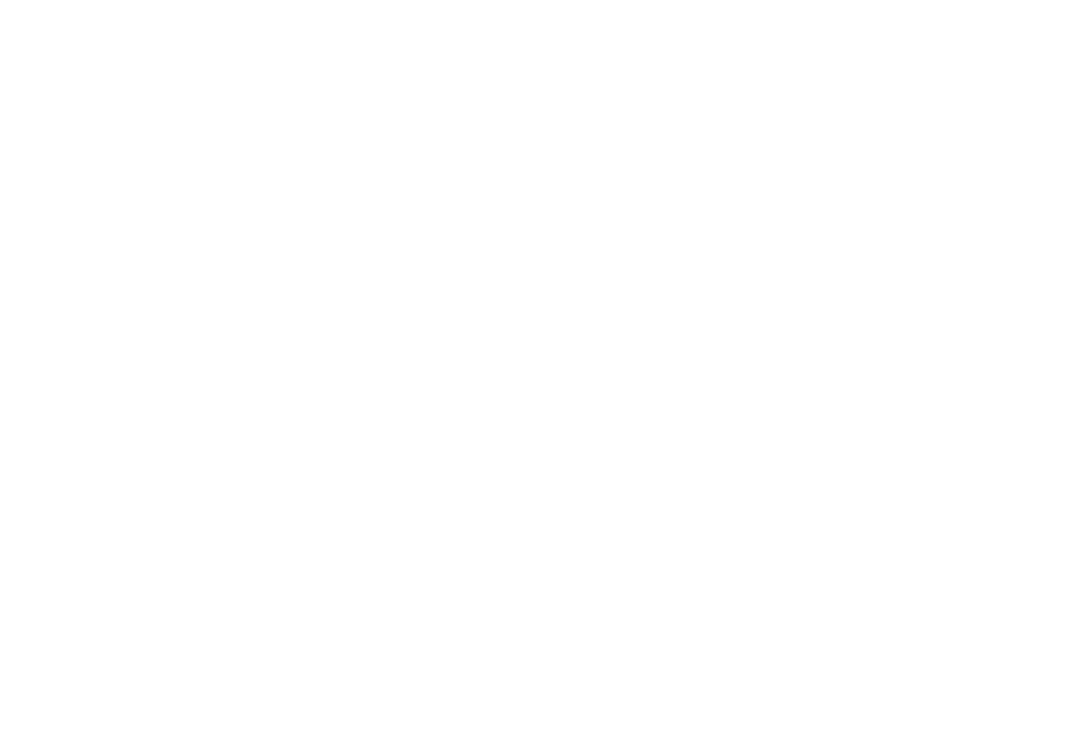 Service Is Everything, P.A.